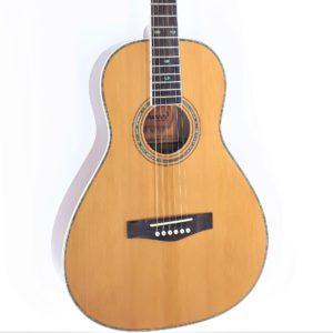 richwood parlor travel guitar cuerpo pequeño
