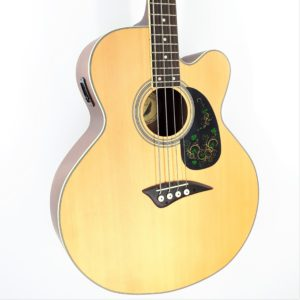 dean eab cw acoustic bass