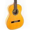 Raimundo 125 Flamenco