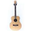 James Neligan ASY-A-MINI EQ Electro Acoustic