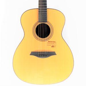 guitarra electroacustica mayson m9
