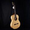 Altamira Flamenco N300F+