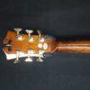 dangelico sd300 acustica guitar shop