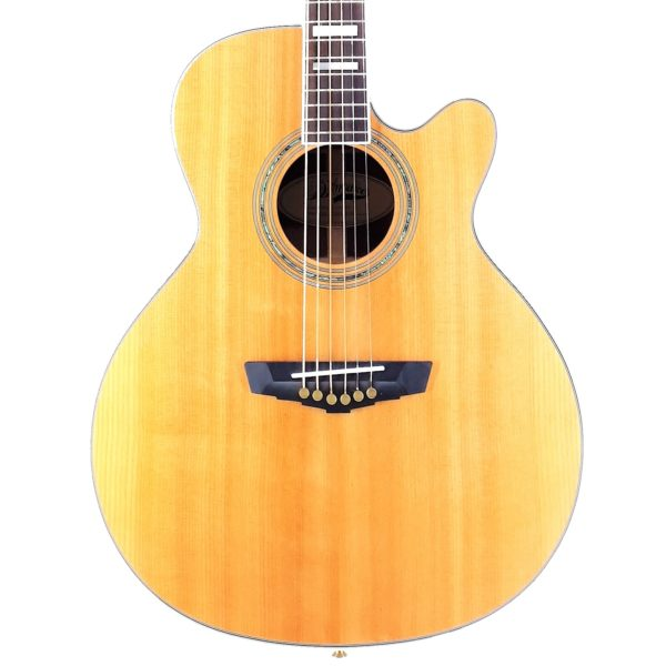 Dangelico Sg100 Mercer (3) guitar shop barcelona