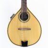 mandolina amplificada