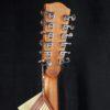 Richwood D4012 CE Electroacustica