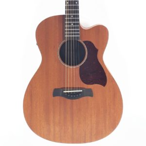 richwood acustica a50ce best seller