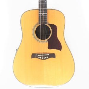 richwood master series dreadnought d65 va acustica